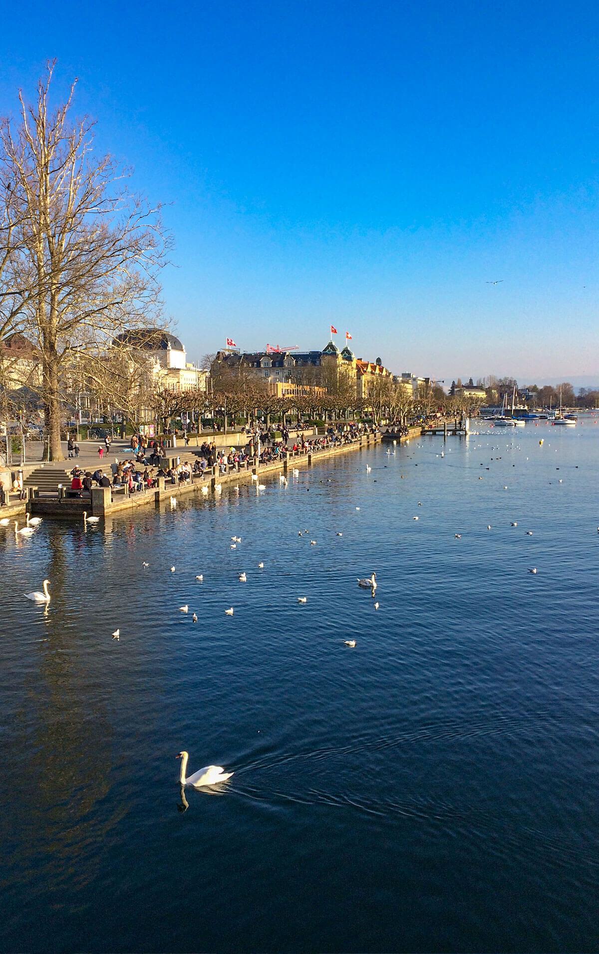 Zürich erkunden: Zürichsee