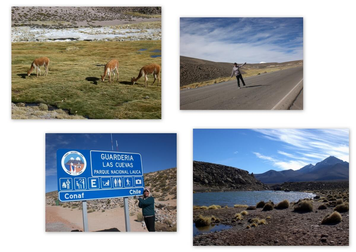 Chile Highlight Lauca