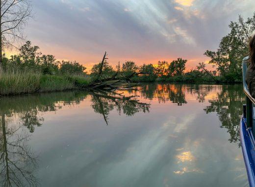 Holland Nationalpark De Biesbosch Sonnenuntergang