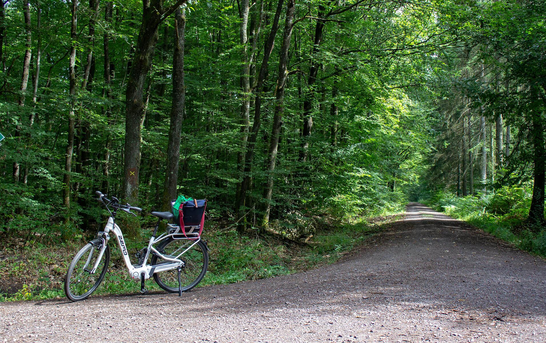 Warndt Völklingen Saarland Urlaub